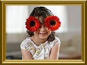 funflowers_frame