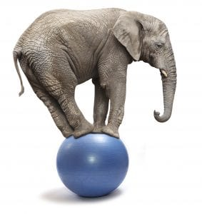 graphic-elephant-blue-ball-stand